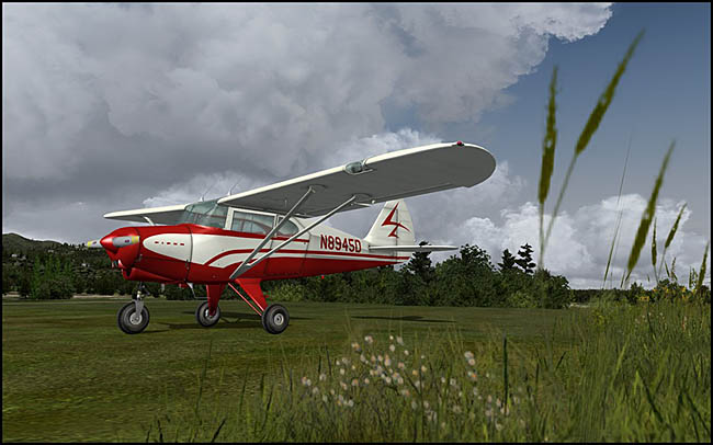 Lionheart Creations - Piper TriPacer